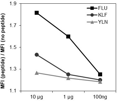 Binding capacity of EGFR-specific peptides to HLA-A2 complex on the surface of T2 cells. The FLU peptide showed the best binding capacity to surface HLA-A2 compared to the two EGFR-specific peptides KLF and YLN. In all peptides expression of surface HLA-A2 complex was dose-dependent.