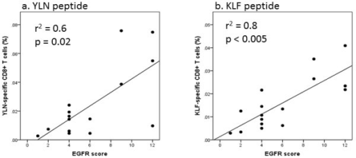 Correlations between the EGFR score and frequency of EGFR-specific CD8+ T cells in PBMC. The frequency of EGFR-specific T cells in PBMC of HNSCC patients is given in percent (%) of CD8+ T cells for YLN-tetramer (a) and KLF-pentamer (b). The EGFR score reflected the staining intensity and frequency of EGFR positive cells in corresponding tumor samples.