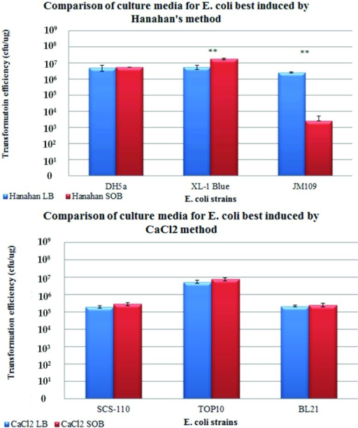 Comparison of the use of LB or SOB as growth mediaBar chart showing the means, standard errors and t tests of TrE obtained from both CaCl2 and Hanahan methods of chemical induction for the respective strains. (Top panel) Bar chart representing the three strains that responded best to Hanahan's method. (Bottom panel) Bar chart representing the three strains that responded best to CaCl2 method. * denotes that P<0.05; ** denotes that P<0.001 for the t tests comparing the means. Refer to Supplementary Table S2 at http://www.bioscirep.org/bsr/033/bsr033e086add.htm for detailed statistical analysis. The t test showed that there was no significant difference between the use of SOB or LB media for DH5α, SCS110, TOP10 and BL21 strains despite higher average TrE for SOB media.
