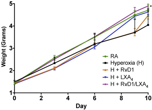 Pup growth patterns by experimental group.RA, room air; H, hyperoxia; RvD1, Resolvin D1; LXA4, Lipoxin A4. *p<0.05 compared to Hyperoxia group.