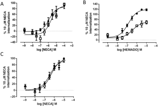Effect of PTx treatment on NECA- and HEMADO-mediated A3-YFP internalization. A3-YFP- (A and B) or A3 W243F-YFP-expressing (C) cells were treated with (open symbols) or without (closed symbols) PTx overnight (100 ng·mL−1). Cells were stimulated with increasing concentrations of NECA (A and C) or HEMADO (B). Automated confocal images on the ImageXpress Ultra plate reader were obtained and granularity analysis preformed as described in methods. The data shown represent granule count per cell and are represented as a percentage of the 10 μM NECA response. Each data point represents the mean ± SEM of three (A), five (B) and four (C) experiments performed in triplicate.
