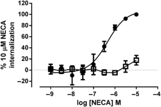HEMADO pretreatment inhibits NECA-mediated internalization of A3 W243F-YFP. Cells expressing A3 W243F-YFP were treated with (open squares) or without (closed circles) 10 μM HEMADO for 30 min before the addition of increasing concentrations of NECA for 45 min and images were obtained automatically. Granularity analysis was performed on the resulting images. Data shown represents granule count per cell. Data are normalized to basal (in the absence of agonist) and maximal internalization mediated by 10 μM NECA and each data point represent the mean ± SEM of three experiments performed in triplicate.