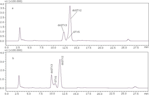Chromatographic separation of dcGTX3-GTX5-dcGTX2, (a) with 11 mM heptane sulfonate in mobile phase; (b) with 8.25 mM heptane sulfonate in mobile phase.