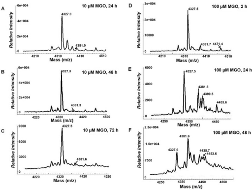 A-C. Expanded MALDI-TOF MS spectra obtained from rhBD-2 (20ng/μl) incubated at 37°C with 10 μM MGO for 24 h (A), 48 h (B), or 72 h (C) shows increasing peak intensity for a mass increase of + 54 Da (dehydrated) only with concomitant reduction of unadducted rhBD-2 peak intensity. D-F. Expanded MALDI-TOF MS spectra obtained from rhBD-2 (20ng/μl) incubated at 37°C with 100 μM MGO for 2 h (D), 24 h (E), or 48 h (F) shows increasing peak intensities with mass increases of + 54 Da (dehydrated), + 72 Da (intact), and combined ionic species of + 108 Da (+ 54 Da+ 54 Da), + 126 Da (+54 Da + 72 Da), and + 144 Da (+ 72 Da + 72 Da) with time of incubation. Increasing incubation time of the peptide with 100 μM MGO favors mass increases by dehydrated (+ 54 Da) ionic species, only with reduction of unadducted rhBD-2 peak intensity.