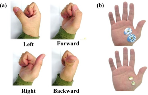 (a) Configurations of the thumb that were used in motion classification; (b) electrode placement.