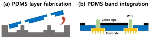 Fabrication process for the PDMS band array. (a) Base PDMS layer fabrication; (b) the MNA electrode integration and Velcro tape attachment.