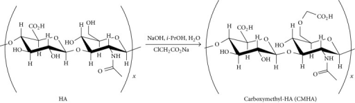 Chemical modification of hyaluronan (HA) to carboxymethyl hyaluronan (CMHA). HA was chemically modified to produce CMHA in a basic solution which modifies approximately 15–20% of the 6′-OH groups of the N-acetylglucosamine residues. This process reduces the molecular weight and introduces additional carboxyl groups for stabilization of nCaP.