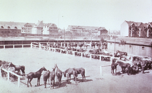 <p>Showing a horse corral somewhere in Germany.</p>
