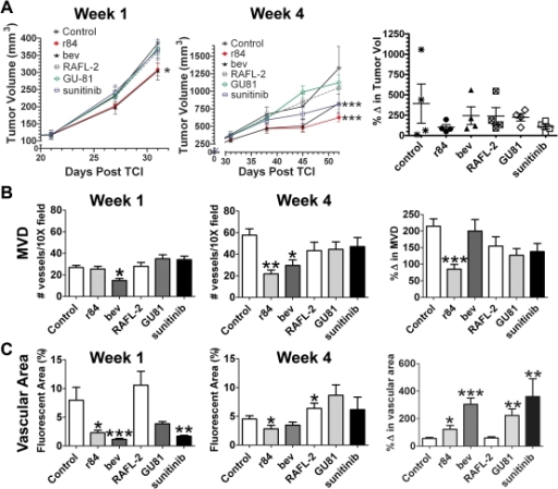 Anti Tumor And Anti Vascular Effects Of Vegf Pathway In