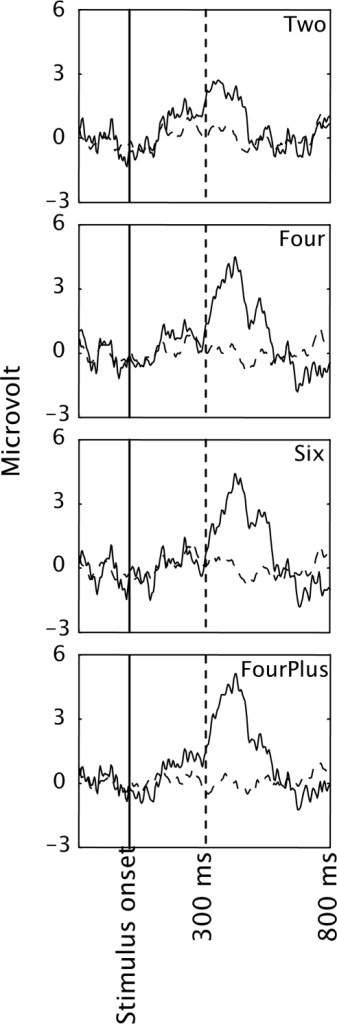 EEG averaged across participants and presented separately for targets (solid lines) and distracters (dashed lines) in the four conditions of Experiment 1. Only data from electrode Pz is presented.