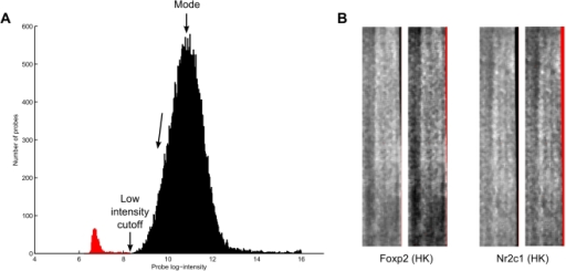 Low intensity probe filtering.(a) A filter cutoff point is determined based on the intensity histogram. (b) Two examples of how low intensity filtering successfully removes dark edge artifacts in PBM samples. In both samples pairs, the original sample is on the left, and the filtered sample on the right. Red pixels indicate missing or discarded intensity values.