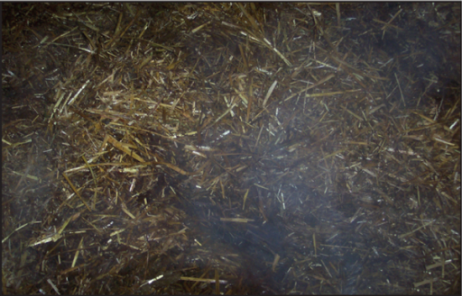 Straw yard beds compost at around 40°C and are associated with Strep. uberis infections.