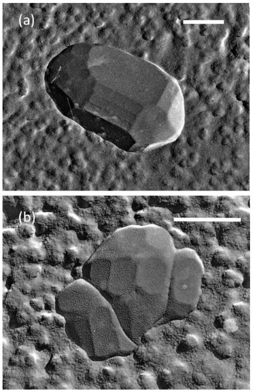 Various TEM images of freeze-fractured replica of the wastewater containing MNBs. Each scale bar indicates 500 nm. An ice crystallite with a faceted smooth surface was located in the center of each picture (a, b), and surrounded by a rough surface composed of fine particles (impurities). The remaining area around the particles is the glass state of the solution.