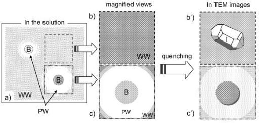 Illustrations of adsorption properties of MNBs in wastewater and of their quenching features. (a) The original wastewater (WW) includes both impurities (small dots) and several amounts of MNBs (B). Since a MNB sweeps impurities around it on the surface, the swept area is less polluted (white area around B) and the surface of the MNB is covered by impurities (small dots). When this solution is quenched and the replica samples are prepared on area (b), no MNBs with homogeneously dispersed impurities were observed. We can observe the TEM image of (b') fine particles homogeneously dispersing with a small ice crystallite (I) formed in the quenching process (related to Figure 4). In contrast, when the replica sample was prepared on area (c) including the MNB surrounded by purified water (PW), the observed TEM image was (c') the MNB adsorbing fine particles on its surface in smooth ice crystallites (related to Figure 5).