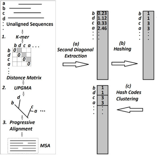 Three main steps of the MSA method, the second diagonal extraction, the hashing of the distance measures, and the clustering of the hash codes.