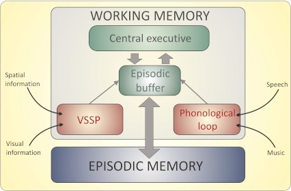 baddeley and hitch working memory pdf