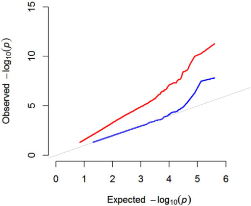 The mixed model dramatically reduces inflation of p-values. Quantile-Quantile plot showing strong p-values inflation for a marginal GWAS that does not consider population structure (red line). Accounting for population structure with the mixed model dramatically reduces inflation (blue line). The grey line indicates the expected p-value distribution under the  hypothesis of no causative markers in the data. Note, that after correction for population structure, only the most significant markers deviate from the  expectation.