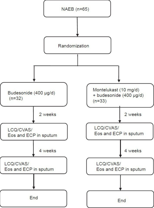 Flowchart summarizing the study protocol. Nonasthmatic eosinophilic bronchitis; leicester cough questionnaire; cough visual analogue scale; Eos: Eosinophil differential count in induced sputum; eosinophil cationic protein.