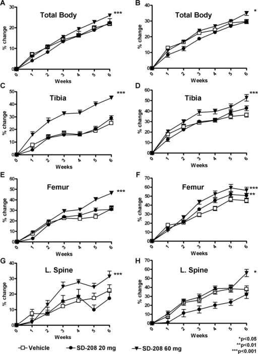 Pharmacologic TβRI inhibition increases BMD.DXA was used to measure BMD longitudinally for male (a, c, e, g) and female mice (b, d, f, h) treated with or without the TβRI inhibitor SD-208 at 20 mg/kg or 60 mg/kg. SD-208 treatment at the 60 mg/kg dose caused an increase in total body (a, b) tibia (c, d), femur (e, f), and lumbar spine (g, h) BMD. SD-208 at the 20 mg/kg dose increased femoral BMD in female mice (f). Data represent mean±SEM (p<0.05, as determined by two-way analysis of variance (ANOVA).