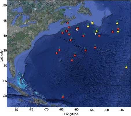 Blue shark PAT tag and pop-up locations.Map shows tagging (∗) and pop-up (•) locations for 23 blue sharks tagged off the eastern coast of Canada. Pop-up symbols are coloured to match the corresponding tagging symbol. Month of pop-up indicated by number.