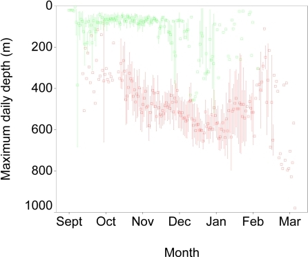 Maximum daily depth of blue sharks across months.Maximum depths varied with the month, but were much greater after entry into warm Gulf Stream waters (red) than prior to entry (green). Symbols show mean ± 1 SE.