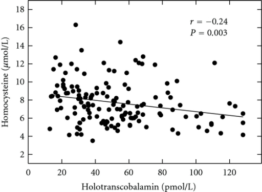 The relation between serum holotranscobalamin II concentrations and serum homocysteine concentrations; r = −0.24, P = 0.003.