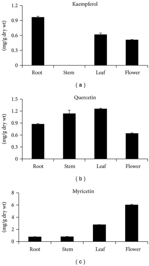 Flavonol content in different organs of S. baicalensis. The height of each bar and error bars represent the means and standard errors, respectively, from 3 independent measurements.