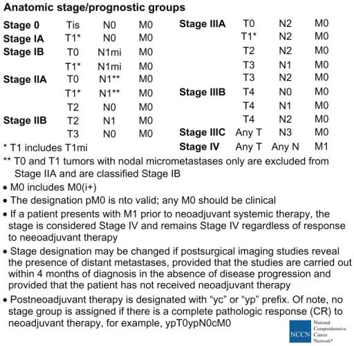 Ajcc cancer staging manual 7th edition pdf.