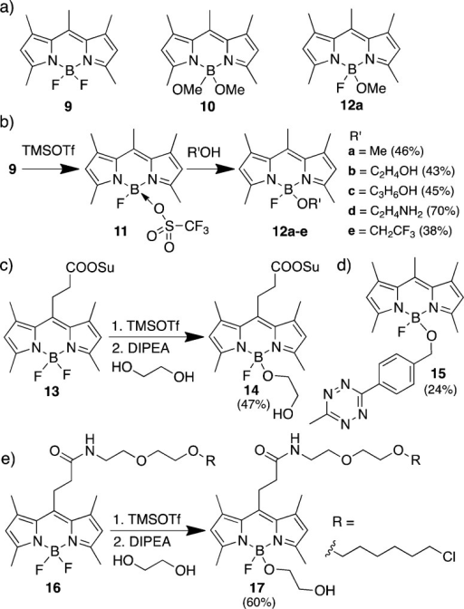 (a) Structures of BODIPY analogues 9, 10, and 12a. (b) One-pot synthesis of MayaFluor analogues 12a–e. Isolated yield after purificationis given in parentheses. (c) Synthesis of MayaFluor 14 and (d) tetrazine-functionalized MayaFluor 15. HaloTag-ligandconjugated BODIPY 16 and MayaFluor 17.