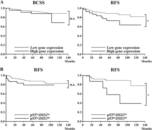 Survival of patients with primary breast cancers. Patient survival was assessed using the Kaplan-Meier method. Clinical breast cancer patients were followed for more than 120 months and classified into groups based on the expression of DSS1 mRNA, which was determined using qRT-PCR of total RNAs from 289 primary invasive breast cancer patients. (A) BCSS (left) and RFS (right) of the DSS1 low (n = 248) and high (n = 41) groups are shown. Statistical significance was calculated as log-rank: n.s.P = 0.25 (left) and *P = 0.011 (right), respectively. (B) The patient survival was compared using double markers with p53 and DSS1 mRNAs as p53low/DSS1low (n = 120), p53low/DSS1high (n = 31), p53high/DSS1low (n = 85), and p53high/DSS1high (n = 10) groups. Statistical significance was calculated as log-rank: n.s.P = 0.49 (left) and *P = 0.045 (right), respectively.