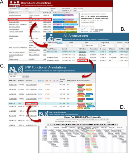 Screen shot of VaDE contents. (A) Reproduced Associations page, (B) All Associations page, (C) SNP Functional Annotations page and (D) Genome browser.
