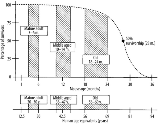 Representative age ranges for mature life history stages in C57BL/6J mice. (Fox JG, Barthold SW, Davisson MT et al.: The mouse in biomedical research, 2nd edition: Diseases, Elsevier, 2007; p. 645)