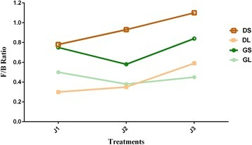 Firmicutes/Bacteroidetes ratio during the three treatments