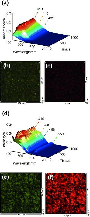 Microspectroscopic analysis of aluminium migration in silicalite‐containing Al2O3‐bound extrudates. a, d) Filtered in situ optical absorption time series spectra during thiophene oligomerisation over Sil80‐Al and Sil20‐Al, respectively. Corresponding 3 D top‐view CFM images of b, c) Sil80‐Al and e, f) Sil20‐Al, excited with b, e) 488 nm laser and c, f) 561 nm laser.