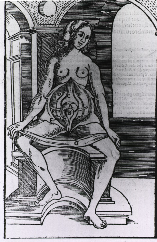 <p>Interior view: a nude female figure seated on a birthing chair; with her abdomen exposed for anatomical analysis.</p>
