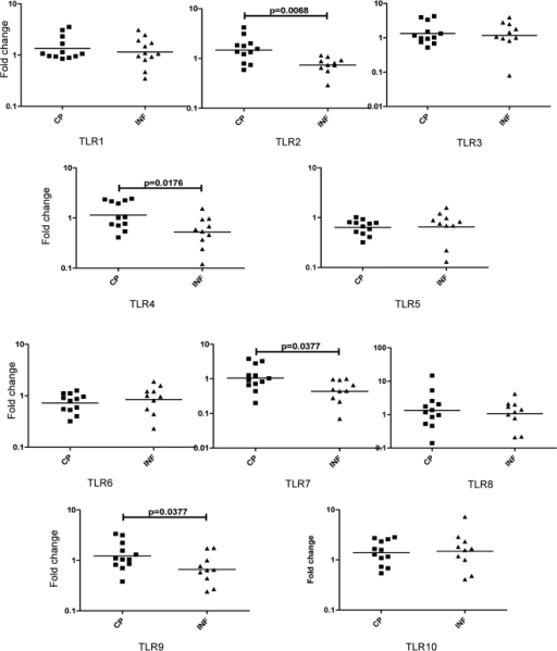 Filarial lymphedema is associated with increased expression of TLR2, 4, 7 and 9 mRNA.PBMCs from filarial lymphedema [CP] (n = 12) and asymptomatic infected [INF] (n = 10) patients were stimulated with BmA (10 µg/ml) for 24 hours, and TLR1-10 mRNA were measured by real-time RT-PCR. Results are shown as fold change over media control. P values were calculated using the Mann-Whitney test.