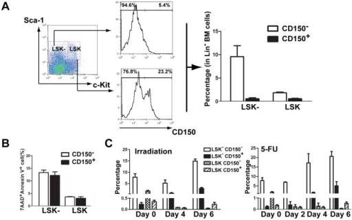 An increase in LSK − CD150− cells reflects apoptosis of HSCs.(A) The LSK− cell population is basically CD150-negative. LSK+ (Lin−Sca1+c-Kit+) cells and LSK− (Lin−Sca1+c-Kit−) cells from bone marrow of B6 mice were stained with CD150, and analyzed by FACS. (B) High apoptotic rates in bone marrow LSK−CD150− cells. LSK+ and LSK− cells from bone marrow of B6 mice were stained with CD150, further labeled with 7AAD and Annexin V, and analyzed by FACS. Apoptotic rate for each cell population was indicated. (C) An increase in LSK−CD150− cells reflects apoptosis of HSCs. B6 mice were treated with irradiation or 5-FU for different days as indicated. LSK+ and LSK− cells from bone marrow of B6 mice were stained with CD150, were further labeled with 7AAD and Annexin V, and analyzed by FACS.