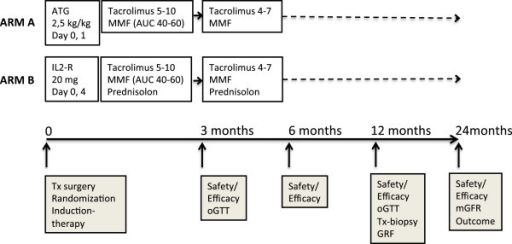 Treatment and follow-up schedule in the SAILOR-study. ATG, antithymocyte globulin; AUC, area under the plasma concentration time curve; IL2-R, interleukin-2 receptor; mGFR, measured glomerular filtration rate; MMF, mycophenolate mofetil; oGTT, oral glucose tolerance test; Tx, transplant.