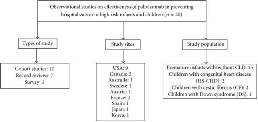 Characteristics of the selected studies on effectiveness of palivizumab in reducing RSV-associated hospitalization in high risk infants and children.