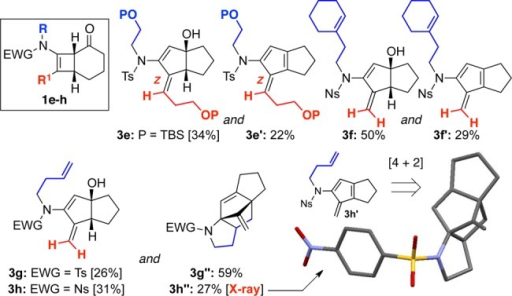 Structurally diverseproducts accessed through thermal rearrangementsof cyclobutenamides 1.