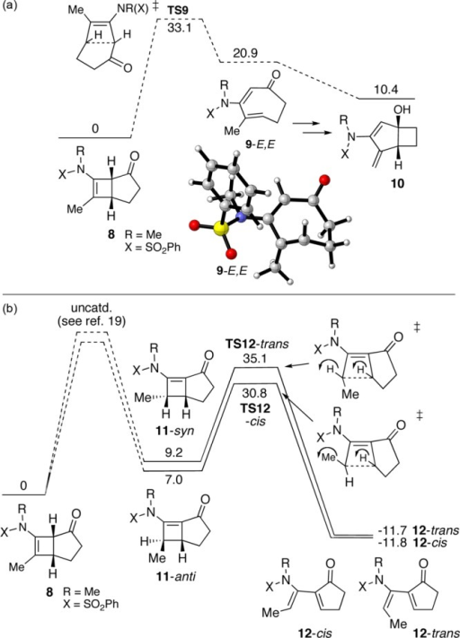 Free energy profiles for thermal rearrangements of 8 to (a) 10 and (b) 12 in toluene.