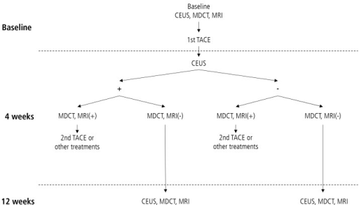 Flow chart of the study. CEUS, contrast-enhanced ultrasonography; MDCT, multidetector computer tomography; MRI, magnetic resonance imaging; TACE, transarterial chemoembolization.