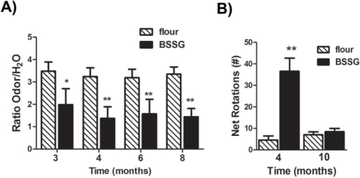 BSSG triggers early olfactory deficits and locomotor asymmetry.(A) Olfactory sensitivity was assessed by comparing the time spent exploring a vanilla solution versus time spent exploring a water-only solution. Lack of detection was defined by equal investigation between the odour solution and the water control (ratio = 1). Control animals spent more time in the vicinity of the odour, as compared to water alone. As early as 3 months following initiation of BSSG intoxication, animals spent a significantly smaller proportion of their time exploring the odour and, by 8 months, displayed little evidence of discrimination. Each bar represents the mean (± S.E.M., n = 18–20) ratio of exploration time. (B) At 4 months following initiation of BSSG exposure, animals displayed locomotor asymmetry, as assessed by methamphetamine (2 mg/kg, i.p.)-induced rotations. No significant increase in drug-induced rotations was observed 10 months following initial BSSG exposure. Each bar represents the mean (± S.E.M., n = 10) net rotations recorded in 1 hour. ** sig. diff. from flour control, p < 0.001, * p < .05.