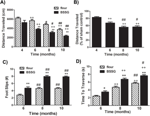BSSG significantly reduced locomotor activity and coordination.(A) As early as 6 months following initiation of BSSG exposure, animals displayed a time-dependent reduction in locomotor activity, as assessed by the distance travelled over a 1 hour period. (B) Locomotor activity was significantly reduced to approximately 82%, 67%, 56%, and 56% of sham controls, at 4, 6, 8, and 10 months following initiation of BSSG exposure, respectively. Each bar represents the (A) mean (± S.E.M., n = 18–20) distance traveled in 1 hour or (B) mean (± S.E.M., n = 18–20) percent of sham control. (C) At 6, 8, and 10 months following initiation of BSSG exposure, animals displayed progressive deficits in locomotor coordination, as assessed by the number of foot slips when tested in the foot misplacement apparatus. The total number of foot slips was significantly greater than sham controls at all three time points. Each bar represents the mean (± S.E.M., n = 18–20) number of foot slips recorded. (D) Animals were also progressively slower to traverse the horizontal ladder in the foot misplacement apparatus. Each bar represents the mean (± S.E.M., n = 18–20) time (sec.) to traverse the ladder. ** sig. diff. from flour control, p < 0.001; ++ sig. diff. from 4 months, p < 0.001; ## sig. diff. from 6 months, p< 0.001; # p< 0.05.