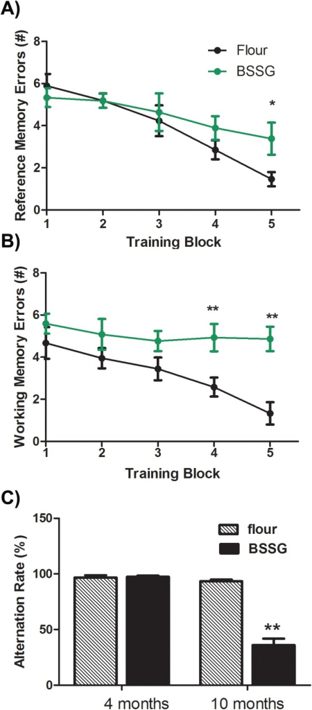 BSSG intoxication impairs spatial working memory.At 10 months following initiation of BSSG exposure, animals displayed significant impairment in both (A) reference and (B) working spatial memory, as assessed by their performance in a radial arm maze. Reference memory errors were defined as entries into arms that were never baited. Working memory errors were defined as entries into previously visited arms. Each point represents the mean (± S.E.M., n = 18–20) number of errors. (C) Spontaneous alternation in a T-maze was also impaired 10 months following initial BSSG exposure, as compared to controls. However, no such deficit was yet apparent at 4 months. ** sig. diff. from sham control, p< 0.001; * p<0.05.