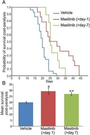 Masitinib treatment after paralysis onset increased survival of SOD1G93A transgenic rats. a Kaplan-Meier survival curves from masitinib-treated and vehicle-treated SOD1G93A rats. SOD1 G93A transgenic rats were treated with masitinib (30 mg/kg/day) or vehicle (water, n = 29, blue line) immediately after observation of paralysis onset of one limb (day 1; n = 14, red line) or starting 7 days after paralysis onset (day 7, n = 9, green line). There was a statistically significant difference in the probability of survival for both masitinib-treated groups when compared with vehicle-treated group, according to the log-rank test of the Kaplan-Meier analysis (p < 0.0006 for masitinib—gait onset vs. vehicle and p < 0.00025 for masitinib—7 days onset vs. vehicle). b The graph shows the mean survival of the three different groups. All data are expressed as mean ± SEM. p < 0.01 was considered significant