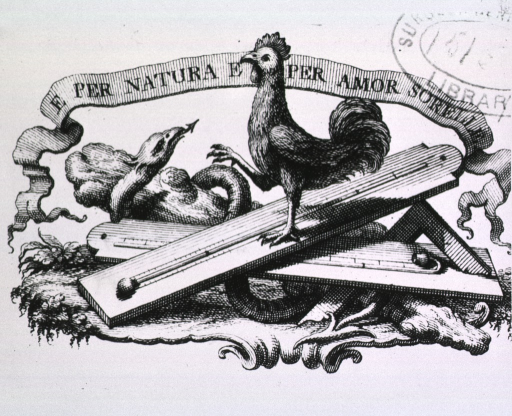 <p>Laying on the ground is a caduceus on top of which is a T-square, a barometer, and a thermometer; perched on top of everything is a rooster.</p>