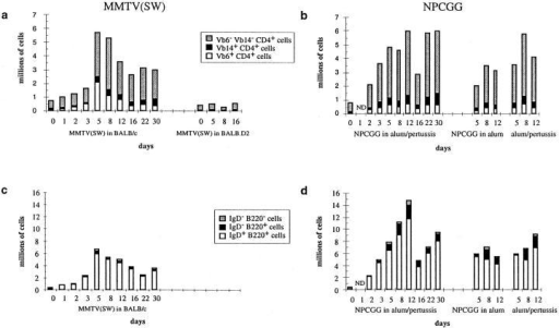Quantitative analysis  of T and B cell subsets within the  draining popliteal LN responding to MMTV(SW) (a, c), or  alum-precipitated NP-CGG plus  B. pertussis (b, d). Cell suspensions were analyzed by flow cytometry as in Fig. 2. Values in a  and b represent mean numbers of  cells/node in different CD4+,  Vβ subsets and those in c and d  mean numbers of CD4−CD8−  cells/node sorted on the basis of  their expression of IgD and  B220. The same control responses were included as for Fig.  2. Three mice were analyzed for  each immunization at each timepoint.