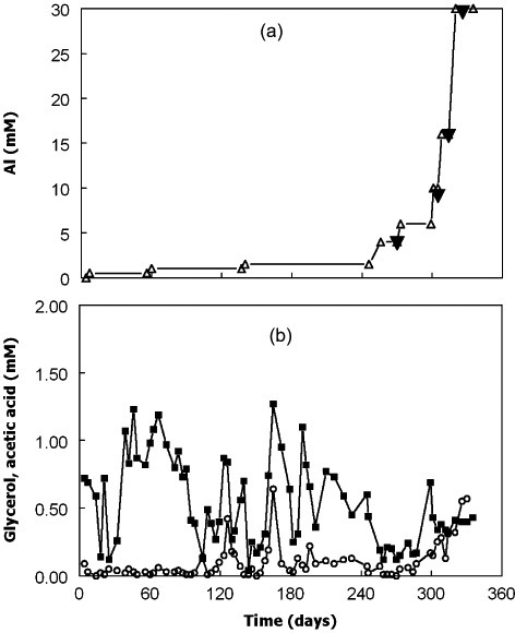 (A) Concentrations of aluminium of the feed liquor (▵) and those determined in bioreactor liquor on four sampling occasions (▴); (B) concentrations of glycerol (○) and acetic acid () in the bioreactor. Concentrations of glycerol in the feed liquor were maintained at 4 mM throughout the experiment.