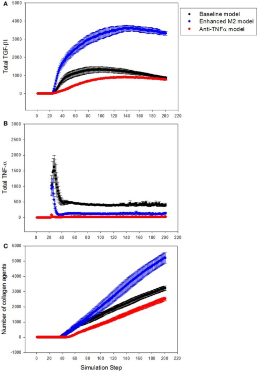 Effect of anti-TNF treatment or M2 enhancement of Kupffer cells in the simulations (n = 10, mean ± SD). (A) TGF-β1 levels in the model with anti-TNF treatment (red), and in the model with enhanced M2 behavior (blue), compared to TGF-β1 levels in the baseline model (black); (B) TNF-α levels in the model with anti-TNF treatment (red), and in the model with enhanced M2 behavior (blue), compared to TNF-α levels in the baseline model (black); (C) growth of collagen in the anti-TNF-treated model (red), and in the model with enhanced M2 behavior (blue), compared to growth of collagen in the baseline model (black).